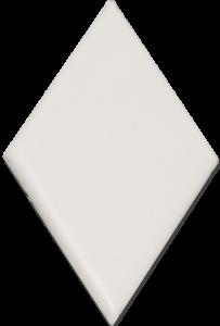 SSN-1573